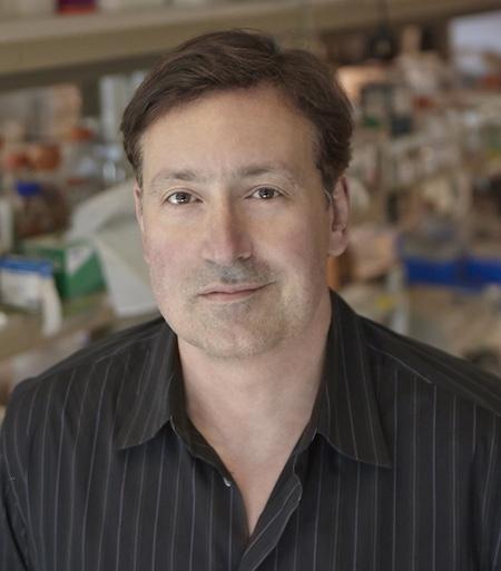 A portrait of John Stamatoyannopoulos